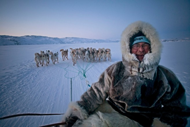 Happy dog sled driver greenland