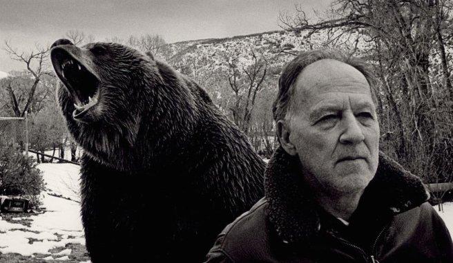 werner herzog bear